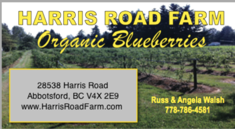 Harris Road Farm Organic Blueberries Abbotsford BC Upick