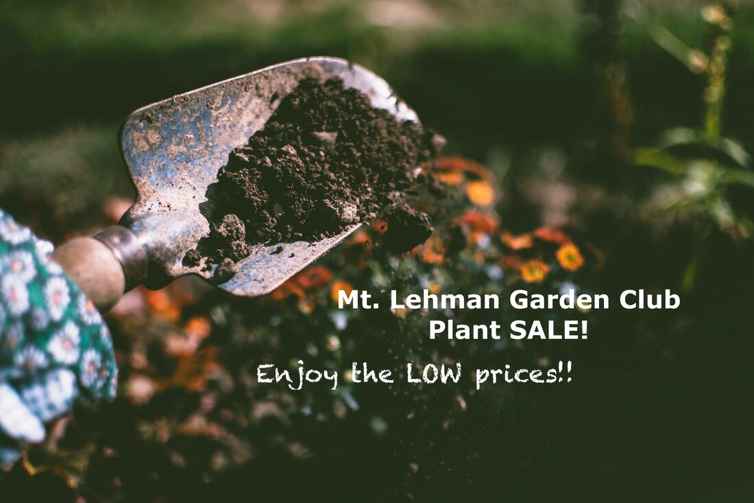 Mt Lehman Garden Club Plant Sale