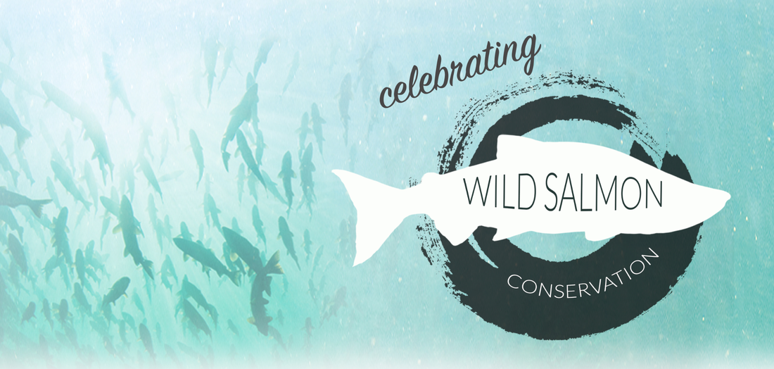 Wild Salmon Conservation
